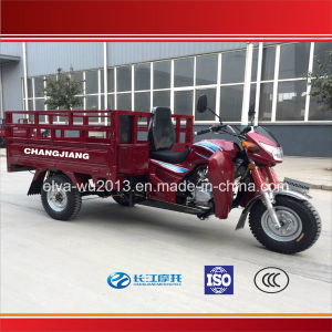 China Popular Model Three Wheel Cargo Tricycle with Competitive Price