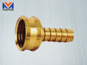 Brass Fitting (VT-68221) pictures & photos