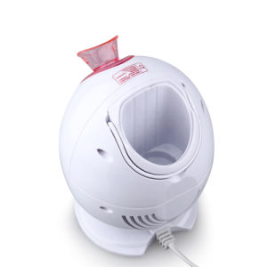 Moisturizing & Blemish Control& Deep Cleansing Facial Hot Steamer Wy-1005 pictures & photos