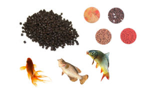 High Quality Fish Feed Bulking Machine pictures & photos