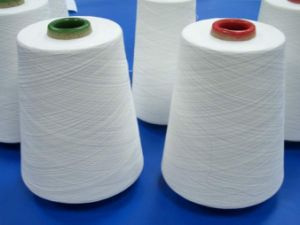 Spun Polyester Yarn for Sewing Thread (30s/2) pictures & photos