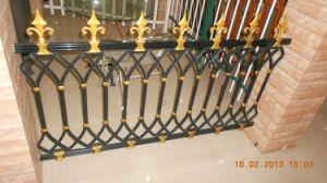 Aluminum Fence pictures & photos