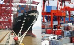Consolidate LCL/FCL Service for USA Shipping pictures & photos