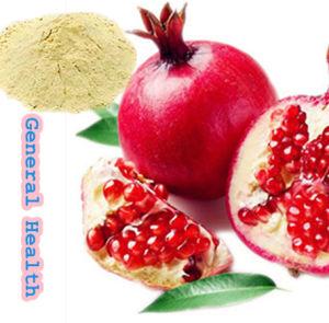 Pomegranate Juice Powder (Organic Fruit powder)