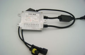 Promotion Slim Canbus HID Ballast 12V 35W Canbus Slim HID Ballast
