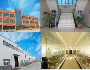 1.8m Indoor/Outdoor Eco Solvent Inkjet Advertisement Printer pictures & photos