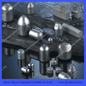 Various Type of Tungsten Carbide for Coal Mining Buttons pictures & photos