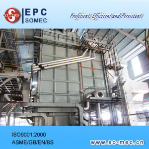 Palm Plantation Captive Power Plant Boiler pictures & photos