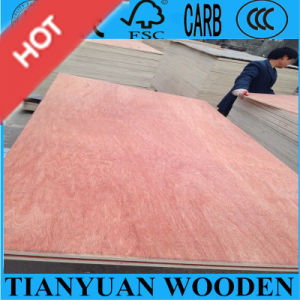 3mm 5mm 6mm Sapele Bintangor Plywood for MID-East pictures & photos