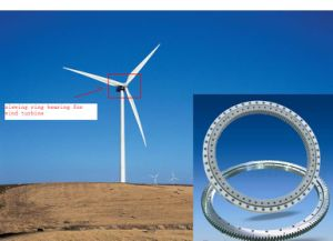 Slewing Ring Bearings for Wind Turbine (HD12098) pictures & photos