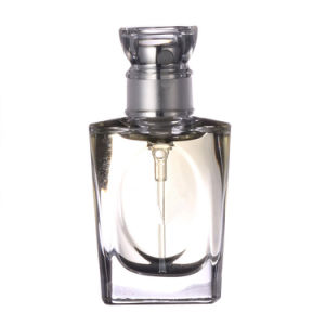 Men Perfumes for 100ml Luxury Design pictures & photos