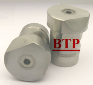 High Precision Machine Part Punch Die (BTP-P180)
