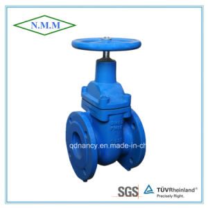 Cast Iron Non-Rising Stem Light Type Gate Valve pictures & photos