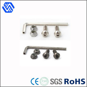 Hex Head Wrench with Nylon Hex Head Nut and Socket Bolt, Socket Head Cap Screw pictures & photos