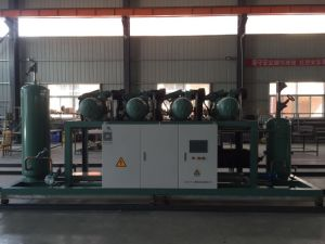 Bitzer High Temperature Piston Parallel Unit Refrigeration Compressor pictures & photos