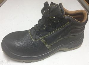 PU Sole Industry Safety Shoe Dh20 pictures & photos