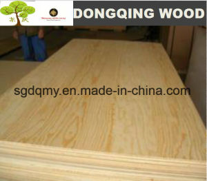Furniture Grade 18 Ply Plywood with Best Quality