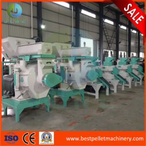 CE Approved Vertical Pellet Granulator Manufacturer pictures & photos