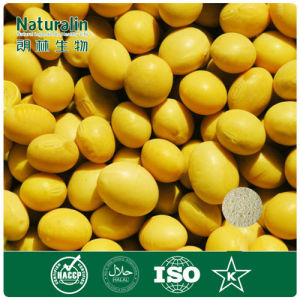 Pure Natural Soybean Extract Powder with 40% Isoflavone by HPLC (NAT-170-9)
