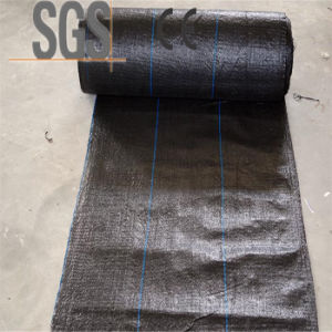 UV PP Woven Ground Cover/Anti-Weed Mat for Agricultural Covering pictures & photos