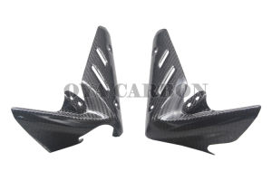 Carbon Fiber Rad Guards for Motorcycle Triumph ST 2011 Small (TR#77) pictures & photos