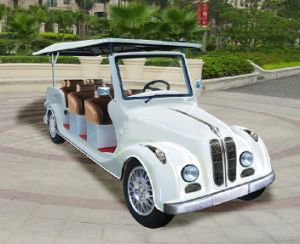 Electric 8 Person Electric Car for Sale pictures & photos
