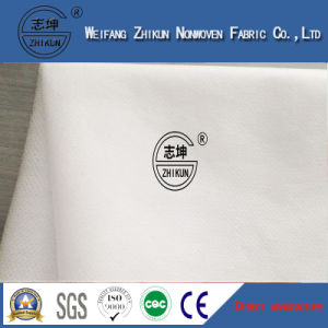 Reliable Quality Hydrophilic Plain Spunlace Nonwoven Fabric Manufacturer pictures & photos