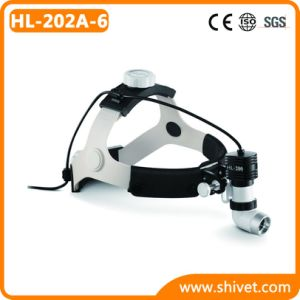 Veterinary Head Light (HL-202A-6) pictures & photos