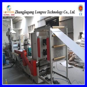 PE Sheet Extruder, High Quality Packing Sheet Production Line pictures & photos