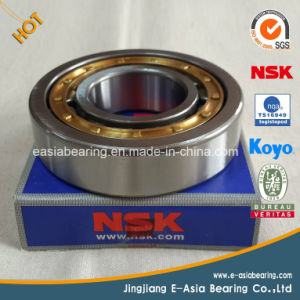 Roller Bearing Nj2334em/C3 Cylindrical Roller Bearing with Brass Cage pictures & photos