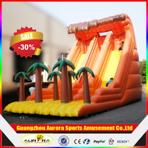 Popular Commercial Cheap Giant Inflatable Slide with High Quality