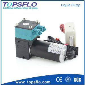 Mini DC 12 Volt Vacuum Pump (DC brushless motor) pictures & photos