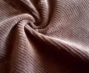 100% Polyester Corduroy Imitating Weft pictures & photos