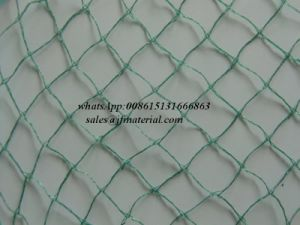 100% HDPE Agricultural Anti Bird Net pictures & photos