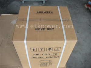 Strong Carton Packing Diesel Engine Set (14HP) pictures & photos