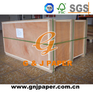28GSM Glassine Cellophane Paper in Good Quality pictures & photos