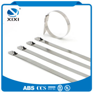 316 Metal Uncoated Stainless Steel Cable Ties Manufacturer pictures & photos