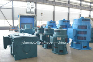 Vertical 3-Phase Asynchronous Motor Series Jsl/Ysl Special for Axial Flow Pump Jsl15-12-330kw-10kv pictures & photos