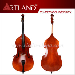 Advanced Double Bass (HB200) pictures & photos