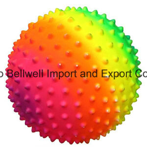 PVC Massage Ball, Exercise Ball, Knobby Ball pictures & photos