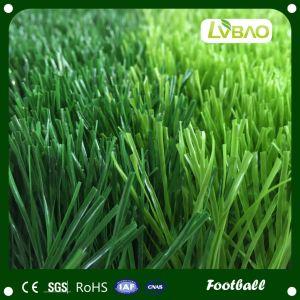 Football Soccer Artificial Grass pictures & photos