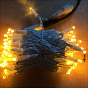 LED Solar Decorative Light (EW_50-AWW 1V2) pictures & photos