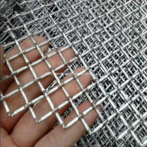 Construction Used Crimped Wire Mesh pictures & photos
