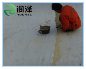 Geosynthetic Clay Liner for Taiwan pictures & photos