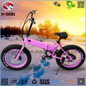 En15914 250W Woman Style Fat Tire Electric Folding Bike pictures & photos