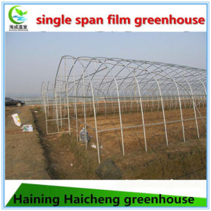 High Tunnel Hoop Greenhouse for Agricultural pictures & photos