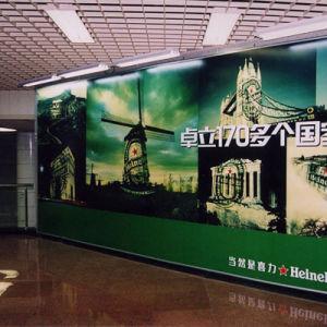 Popular Design Waterproof Interior Decoration Wall Mural pictures & photos