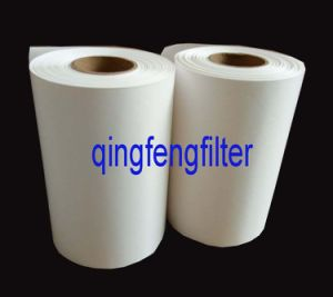 Microporous Nylon (6/66) Membrane Filter for Liquid Filtration pictures & photos