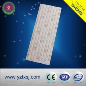 Top Quality WPC Wall Panel for Background Decoration pictures & photos