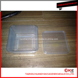 Plastic Injection Ice Cream Container Mold in China